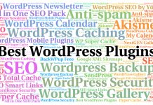 Best WordPress Plugin Image